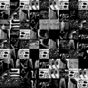 2006 - Bones Mosaic - Digital Collage
