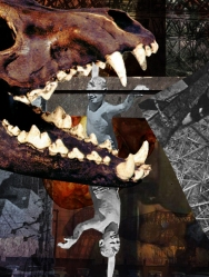 2008 - Animosity - Digital Collage