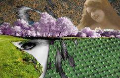 2009 - Untitled - Digital Collage